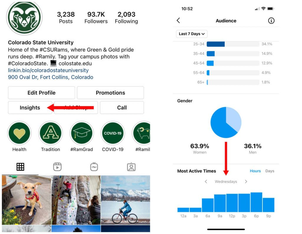 Screenshot of CSU's Instagram bio with an arrow pointing to the Insights section; view of the Audience section inside Insights with arrow pointing to Most Active Times data