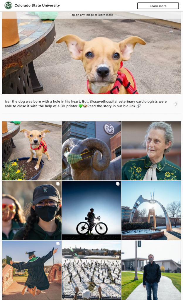 Screenshot of gallery of images available on the link service grid on CSU's Instagram.