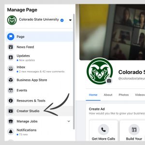 """A screenshot of """"Manage Page"""" menu on Facebook."""